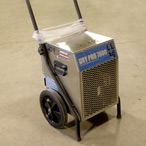 For Rent: Dehumidifier